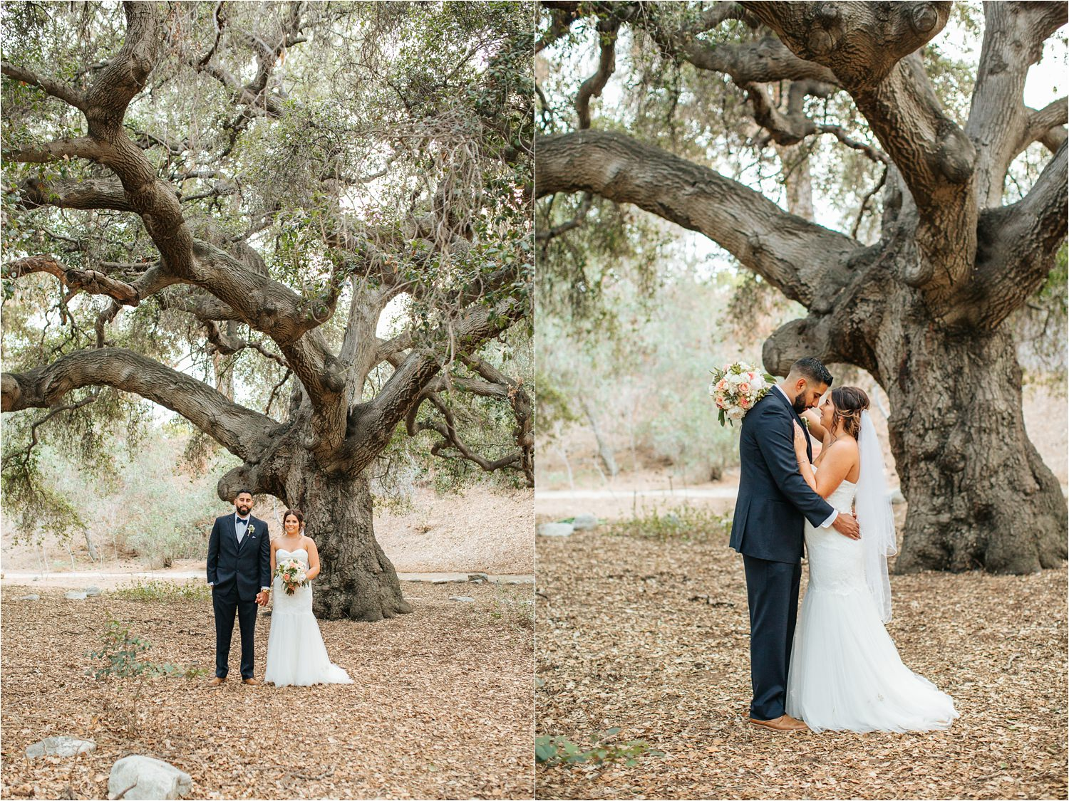 Romantic Oak Tree Bride and Groom Photos - http://brittneyhannonphotography.com