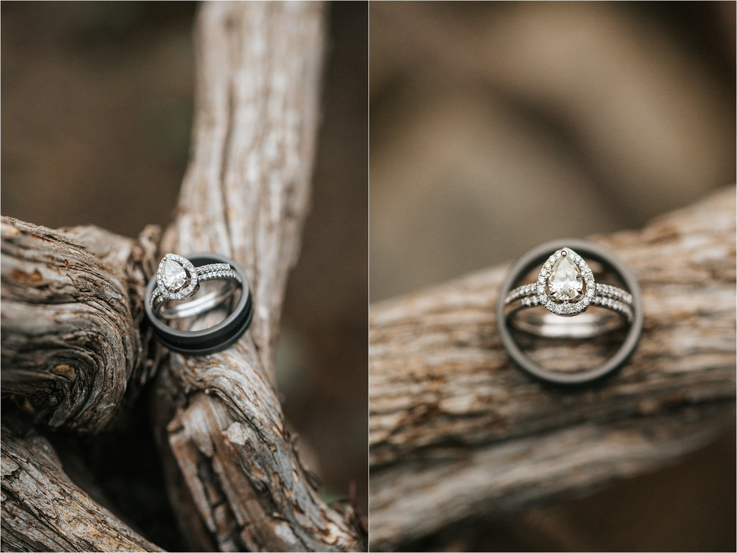 Wedding Rings - http://brittneyhannonphotography.com