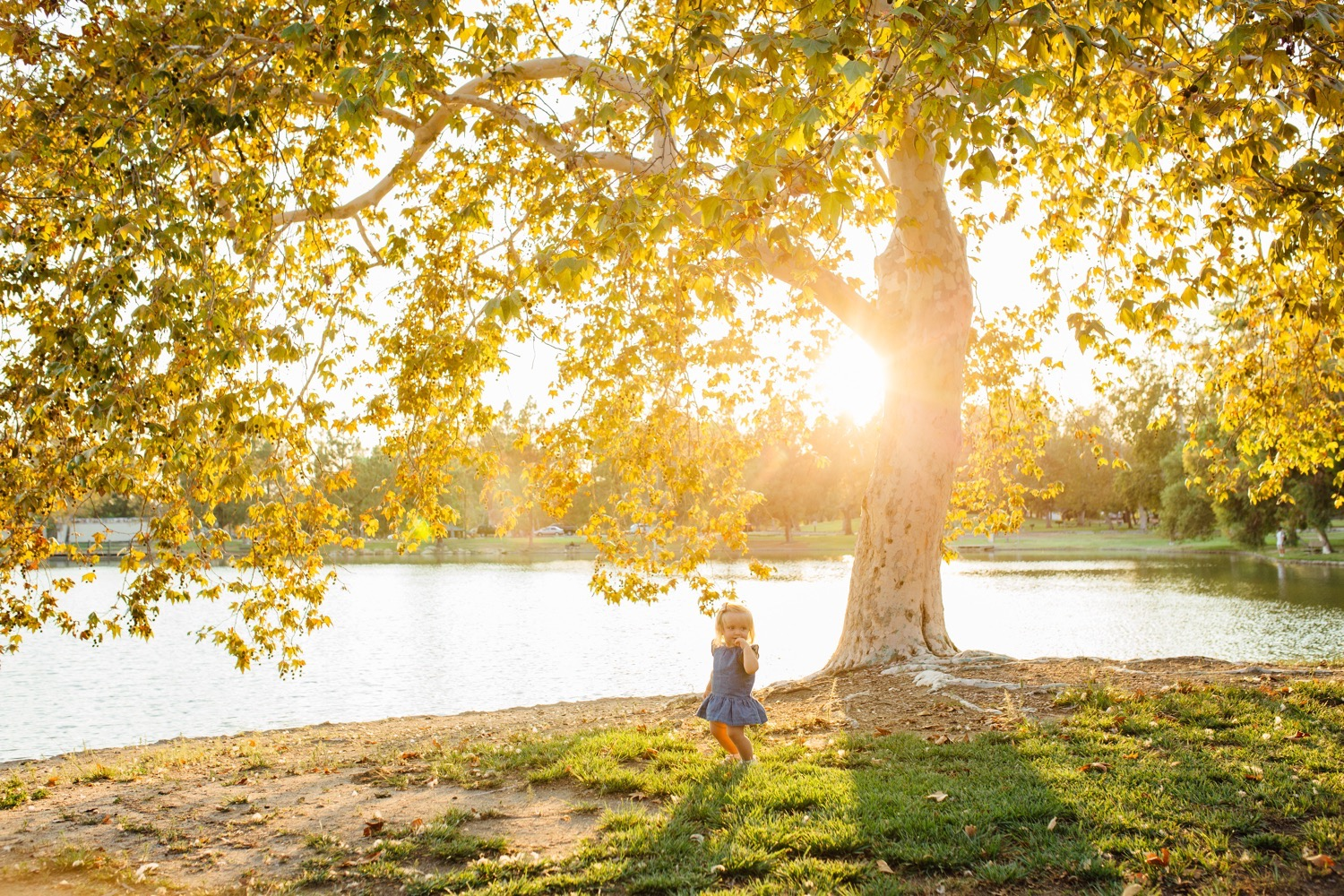 Golden Hour Family Photos in Southern California - https://brittneyhannonphotography.com